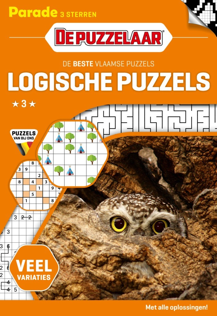 Cover Logische Puzzels